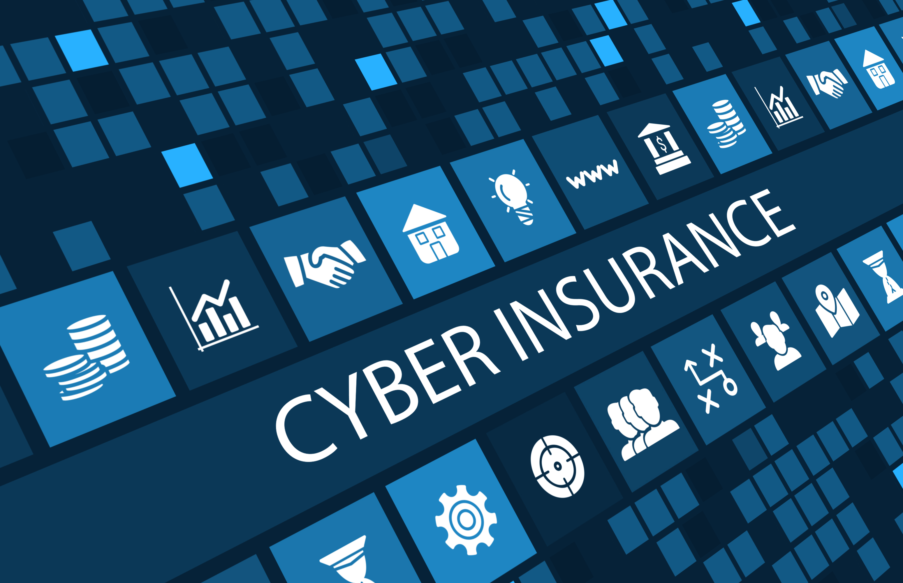 The Emerging Market of Cyber Insurance